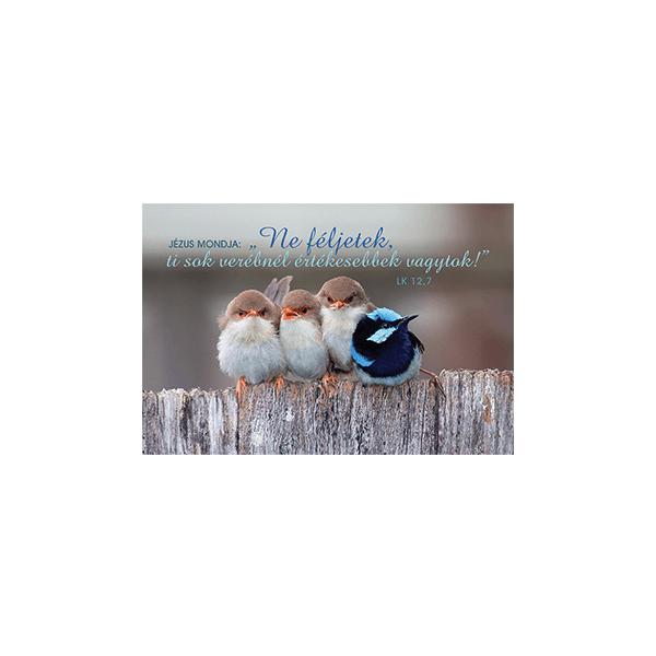 Minikártya – Ne féljetek